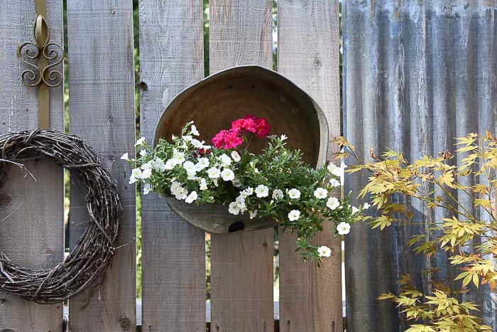 hanging galvanized container planted with calibrochoas and zonal geraniums