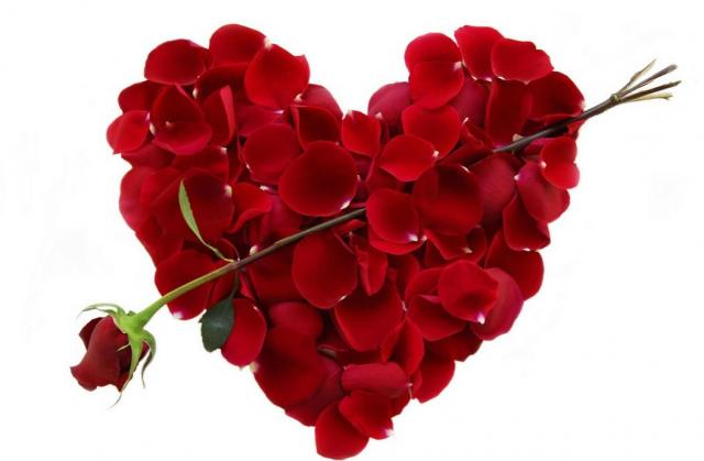 Image result for heart shaped flowers pic