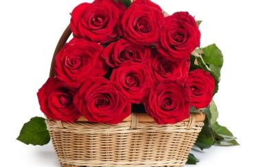 Flowers Basket Send Flowers Like You Mean It