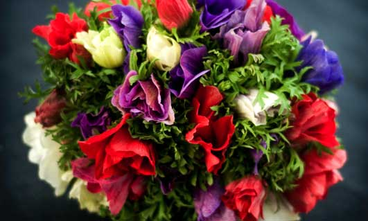 Flowers By Clowance Flowers By Post Wholesale Flowers
