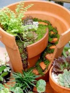 Miniature garden in clay pot