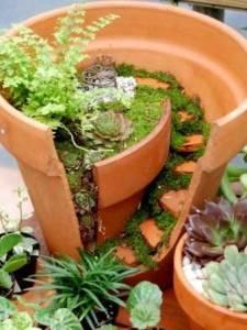 Miniature garden in clay pot