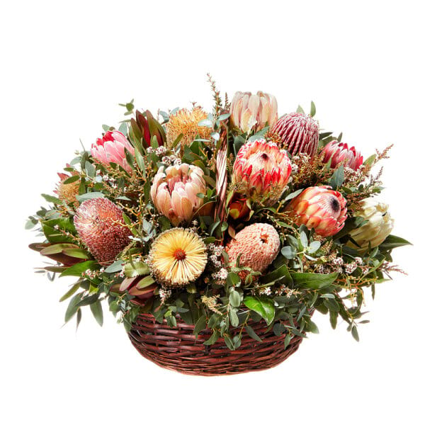 Australian Native Flowers Delivery   Flowers for Everyone Native Flower Basket Arrangement