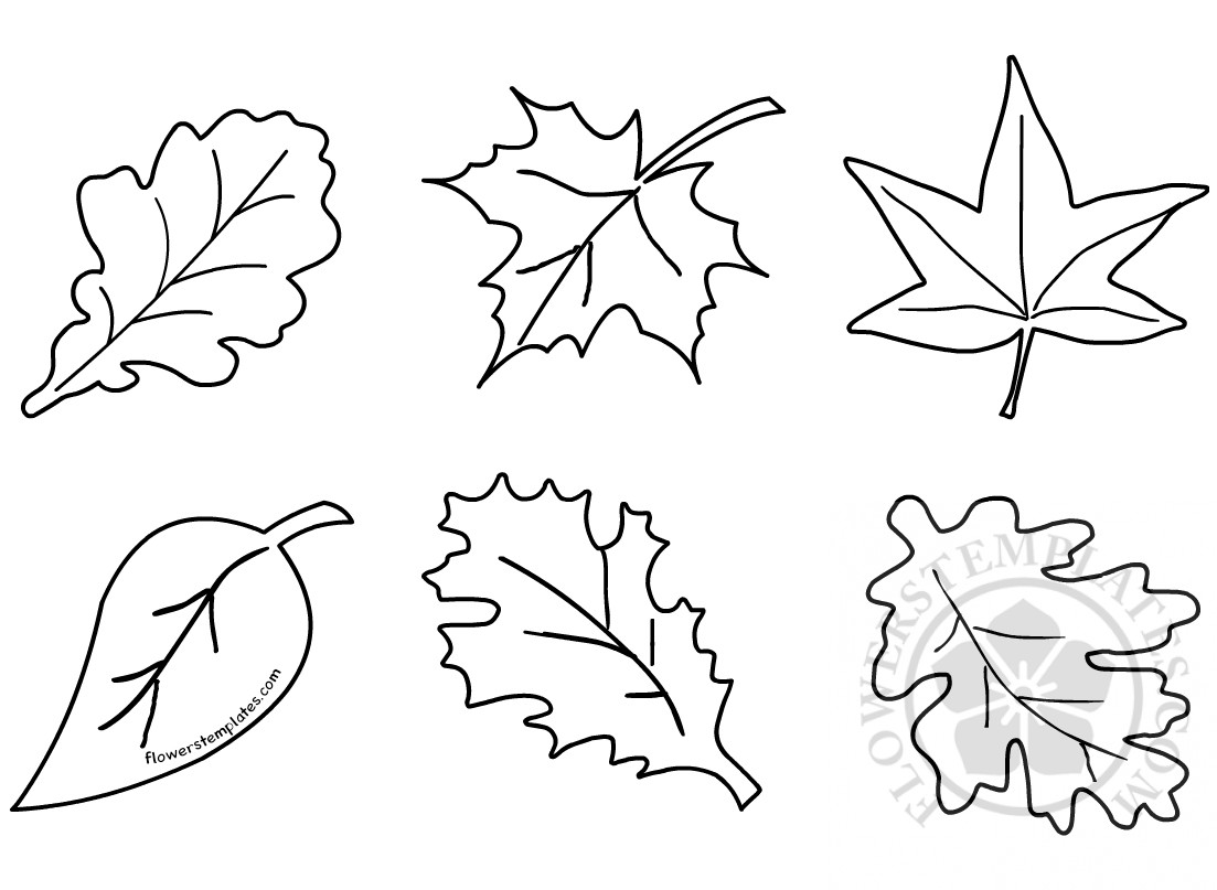 Autumn Leaf Shapes Fall Leaf Flowers Templates