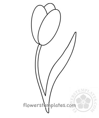 Vector Spring Tulip template