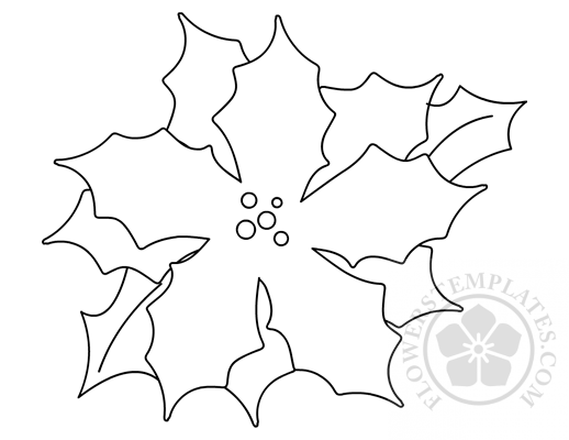 Poinsettia Color Sheet Flowers Templates
