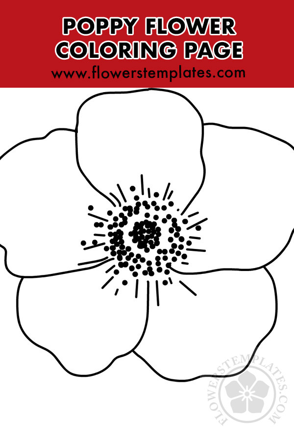 Big Poppy Flower Coloring Page Flowers Templates
