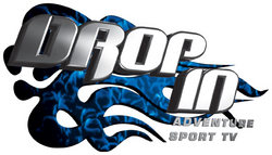 drop in logo