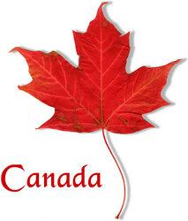 Kanada Leaf Blatt Flagge Logo