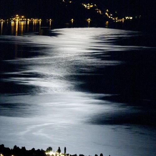 Vierwaldstättersee Mond Spiegelung Moonshine