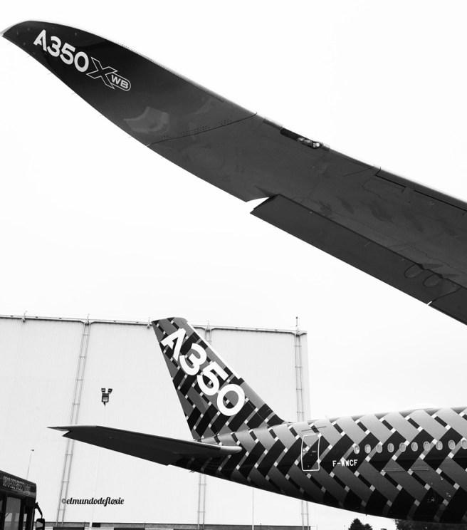 wings350