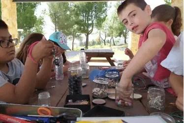 Campamento Fluency Frog 2020 Talleres