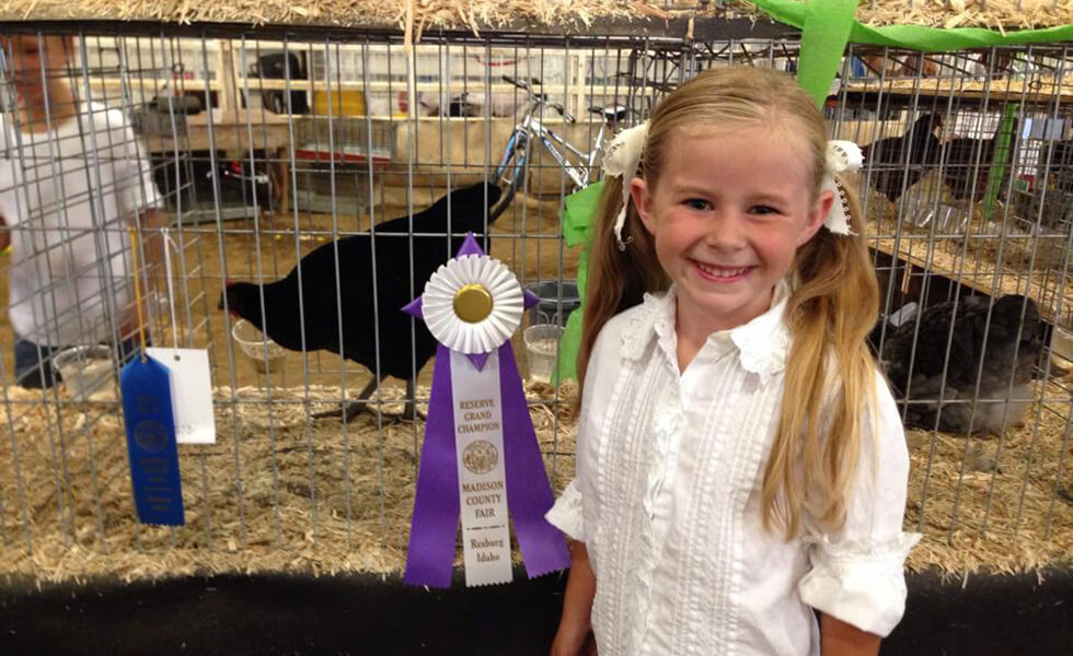 rexburg-idaho-madison-county-fair-chickens