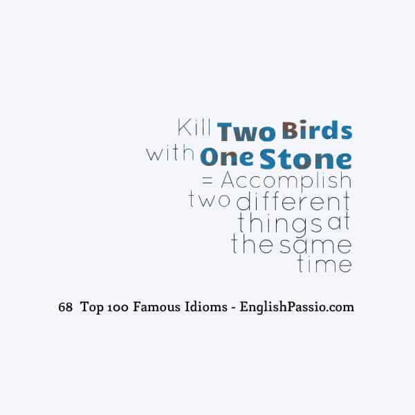 Idiom 68 Kill two birds with one stone