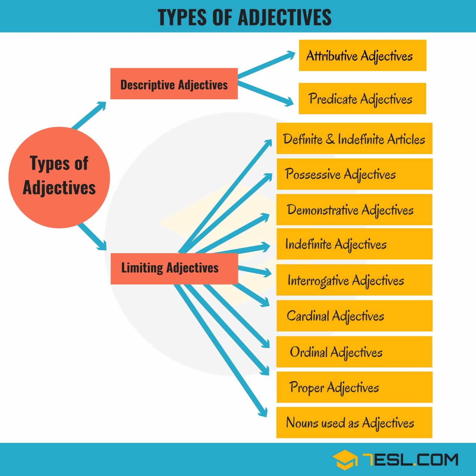 Limiting Adjectives Worksheet For Grade 1