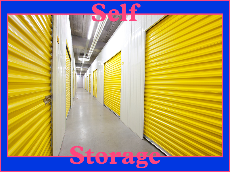 Major Exhibition Open Call: Self Storage