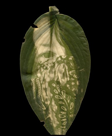 A self-portrait of Megan wearing a face mask is printed into the green chlorophyll of a hosta leaf. Her face takes up the whole leaf and only one eye is visible through her overgrown sweeping hair. The face mask is decorated with vine and leaf patterns.