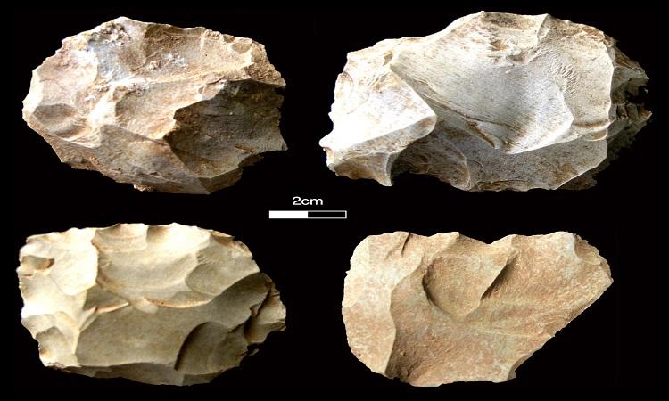 Humans survived the Toba supervolcano eruption 74,000 years ago - FLWL News