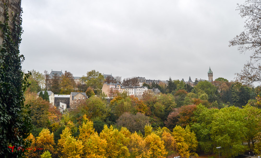 bosques en Luxemburgo