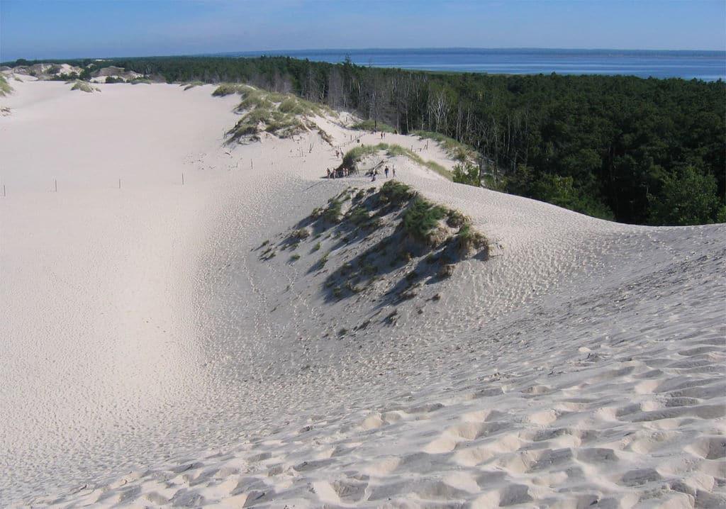 Dunas de arena en Polonia