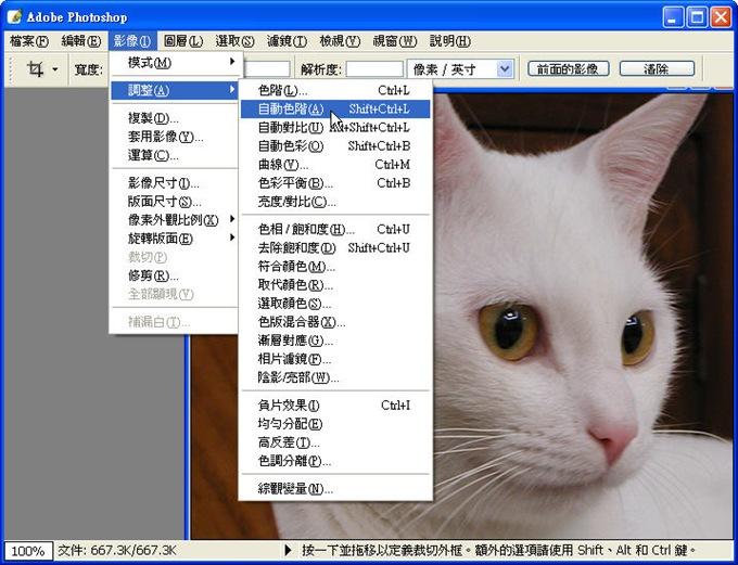 Photoshop 影像設計 Photoshop 後製修圖  - Photoshop 教學 - 如何正確使用 「自動色彩校正選項」 - fly_00_447