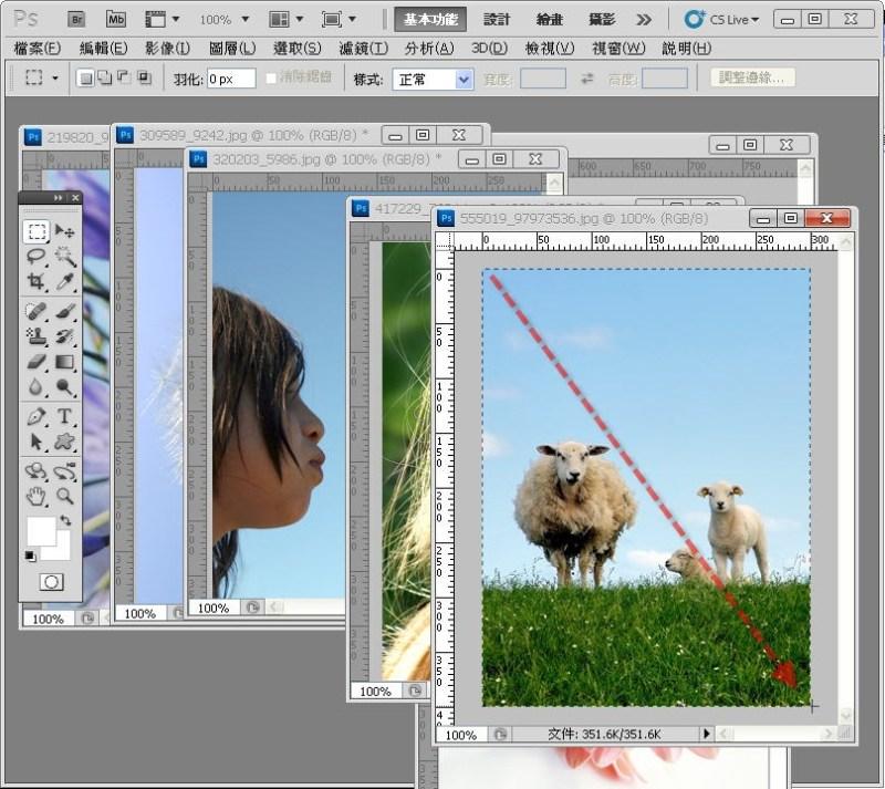 Photoshop 影像設計  - PHOTOSHOP 入門教學 - 圖片固定裁切與白邊 - SNAG0021