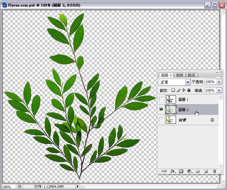 Photoshop 影像設計  - Photoshop 去背教學 - Alpha Channel 去背入門練習 - alpha_channel_11