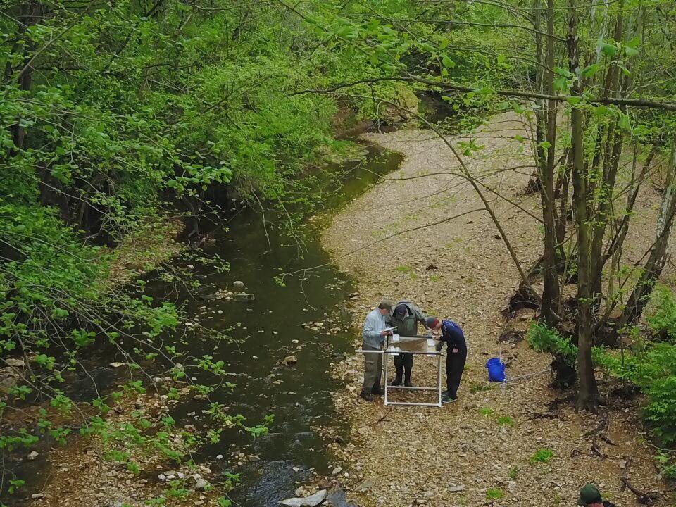 Stream Team: Bonhomme Creek
