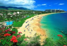 Hawaii Deals