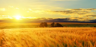 Saskatchewan Travel and Top Tourist Spots