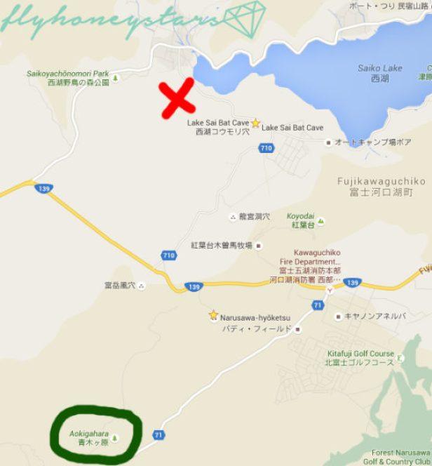 aokigahara map