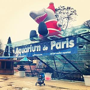 Aquarium de Noël-copie-1
