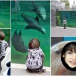 Une idée de sortie en famille: le Parc zoologique de Paris!