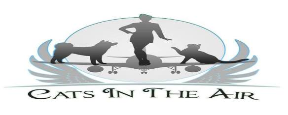 cats in the air logo