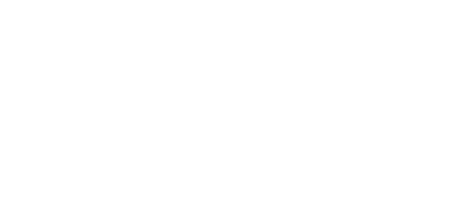 Flying Duck Creative company logo