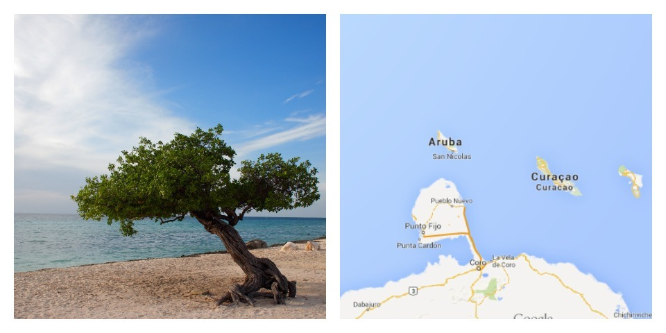 Reisgids Aruba vakantie