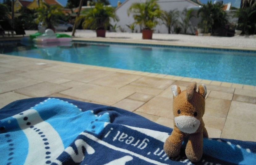 Villa Tokara Hotel Curacao zwembad
