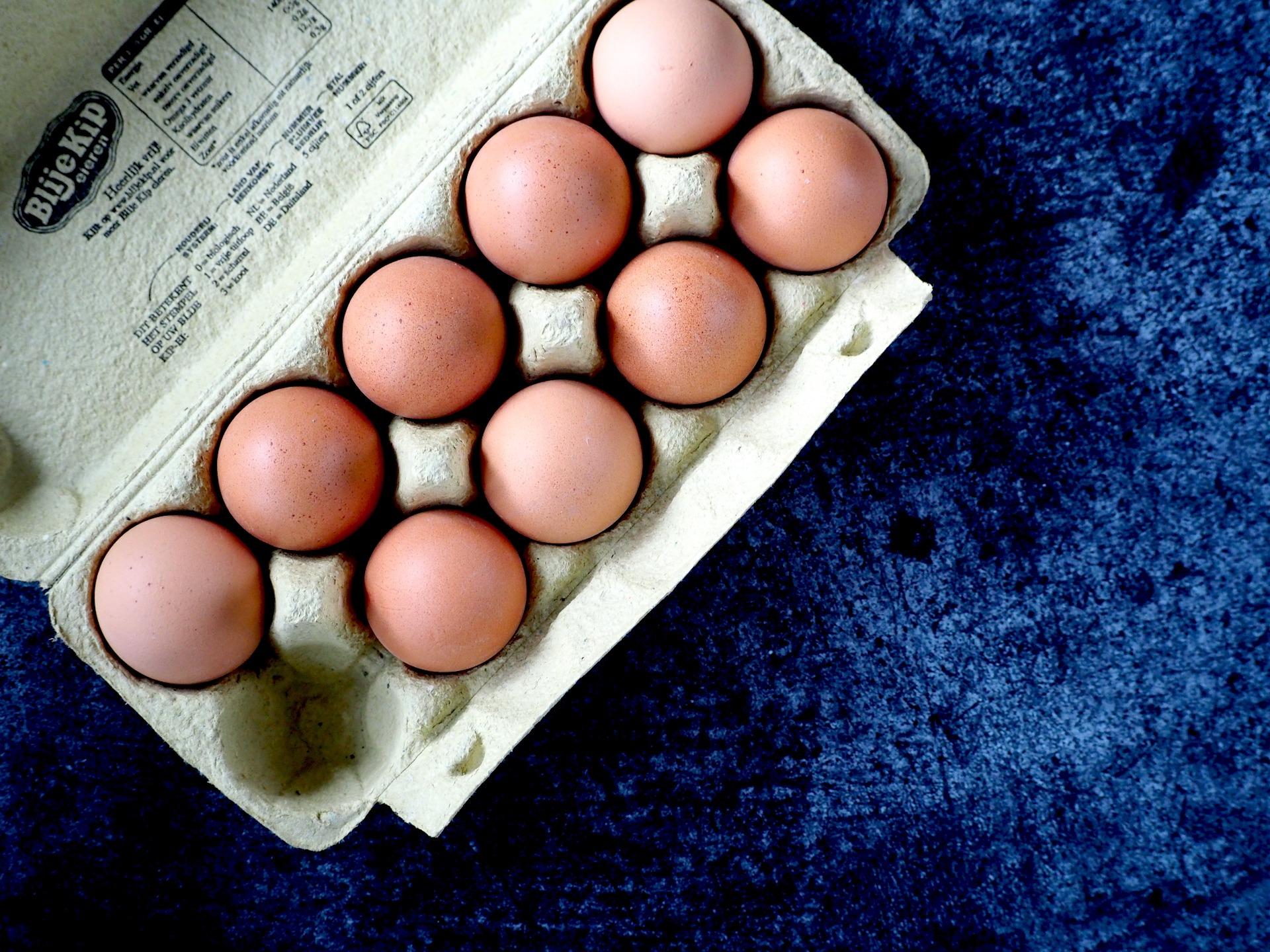 Verschil witte en bruine eieren