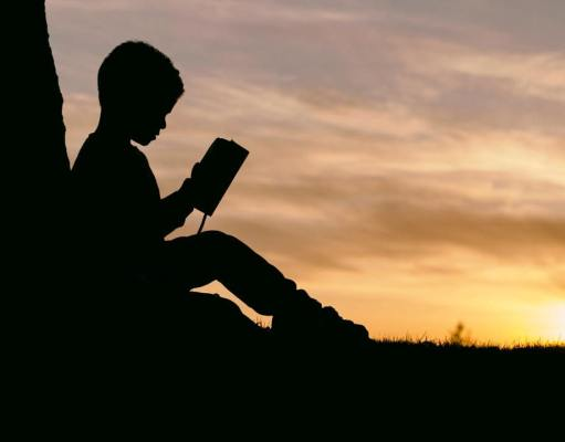 Great Books of the Western World (FlyIntoBooks.com)