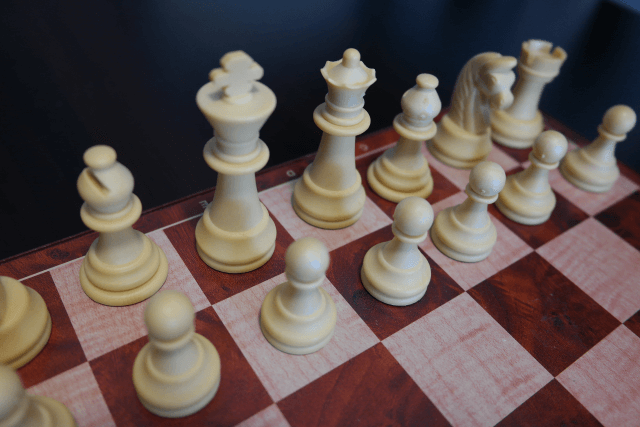 The Most Important Chess Pieces on the Chess Board: the King and the Queen (Flyintobooks.com)