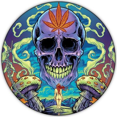 Just two discs left! This is the first in a series of limited edition discs I'm making with Detroit Disc Company. Only 50 made - only 10 with my signature. Printed on foil by Discraft.Dm me if you want one #discgolf #frisbeegolf #discraftdiscs #teamdiscraft #detroitdisccompany #disc#psychedelicart #meditation #trippyart #cannabisart #mushroomart #marijuanaartist #cannabiscommunity