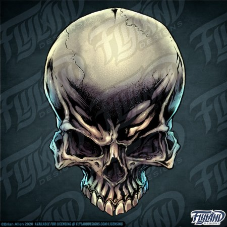 The skull is on a dark teal background, with the jaw missing, the cheekbones sharp and well defined, and the head slightly tilted down, making the top more apparent. Stock Artwork by freelance illustrator Brian Allen