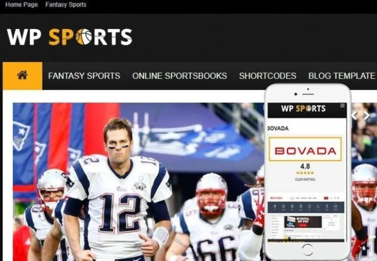 Best Sports WordPress Themes? Try Flytonic WP Sports!