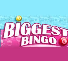 bingo affiliates