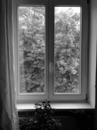 Fünf Fenster - No. 2 || Foto: Ulf Cronenberg, Würzburg