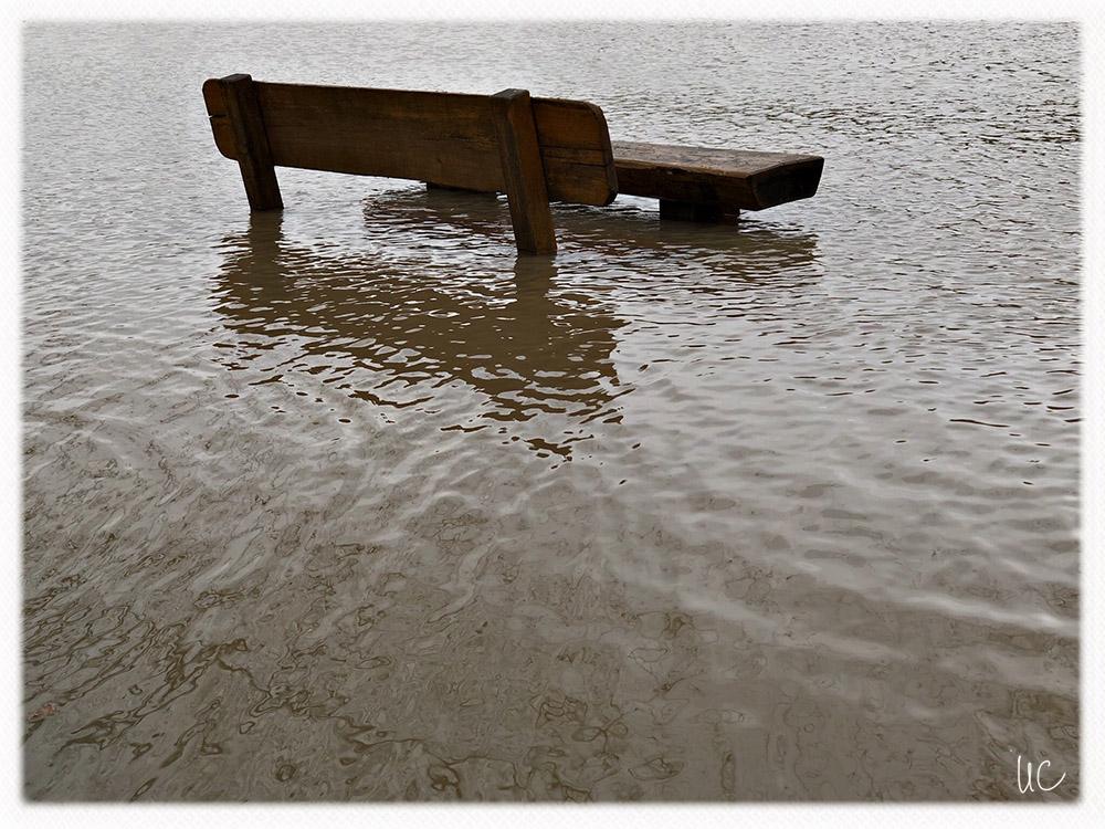 Hochwasser am Main– No. 2