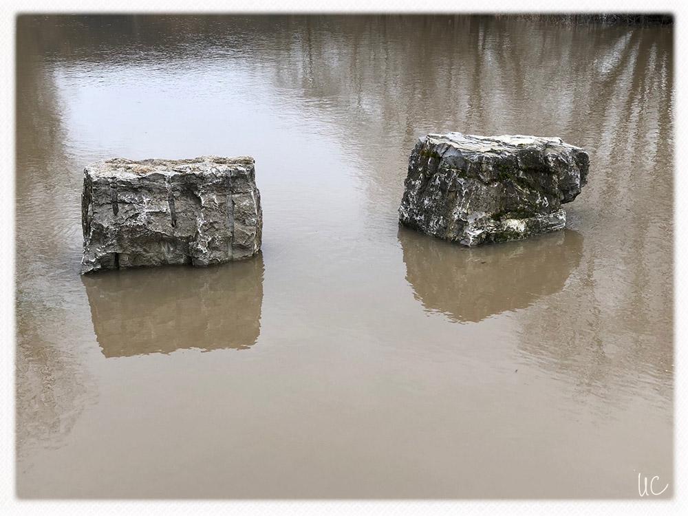Hochwasser am Main– No. 10