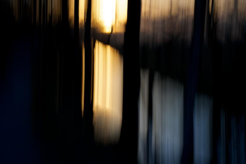 Sonne durch die Bäume fotografiert, Spiegelung in Bach    Foto: © Ulf Cronenberg, Würzburg