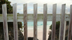 fences photo