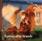 Sustaining brands